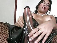 Titty Shemale In Stockings Solo Style