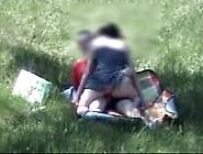 Amateur Sex In Public Park