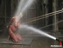 Daphne Ddd Shows Her Tits