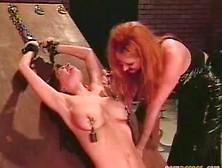 Best Tit Torture