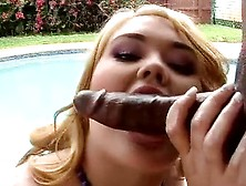 Dirty Plumpy Lisa Canon Acquires Cocoa Tackle Inside Her Ass Hol