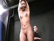 Japanese Bdsm And Extreme Asian Tit Torture Of Teen