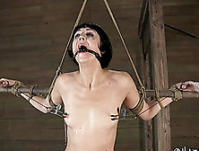 Screams As Bondage Brunette Anal Is Inserted With Toy In Bdsm