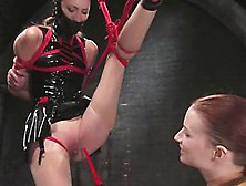 Pain slut training