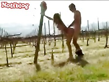 Drunk Chick Banged Outdoors