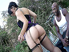 Madison Rose With Her Fat Ass Fucked By A Black Cock
