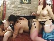 Bbw Lesbian Orgy