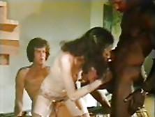 Swedish Erotica 5. 10. 11.  (Usa-1979-80)
