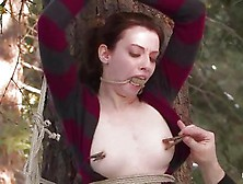 New Slave Kristine Gagged And Tied To Tree Getting Nipple Tortur