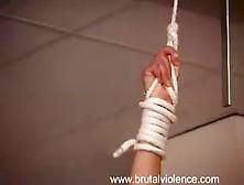 Physical Violence 1. Avi
