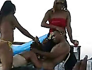 Dirty Ebony Bitches Were Sucking Dick In Front Of The Crowd