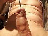 Insert Rod Ball 15Mm Visible Cock Internal Masturb Orgasm