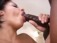 Alexis Silver Gets Banged By A Big Black Cock