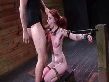 Tattooed Redhead Slut Was Tied And Raped
