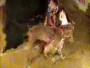 Videos Zoofilia Safadinha Mostrando A Buceta Pro Cachorro Meter