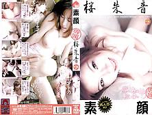 Akane Sakura In Exclusive Straight Up