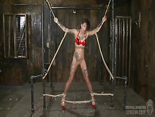 Bounded And Suspended Bonnie Rotten Enjoys Rough Sex