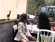 Sexy Hairy Brunette Sucks Dick And Fucks Pink Dildo