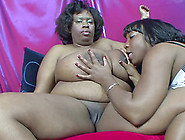 Bbw Black Women Licking Those Fat Pussies And Loving It