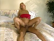 Young Wife Gives Head And Gets Her Pussy Plowed