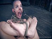 videos shave Bdsm head