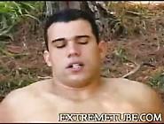 Comendo A Travesti No Mato (Shemale Outdoor)