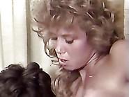 Short Hair White Forelock On The Black & White Sofa