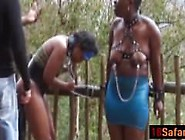 Safari African Whores Tied Up Whipped Penetrated