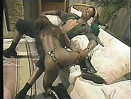 Stacked Ebony Girl Has A Horny Black Guy Licking And Banging Her