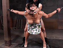 Hot Asian Woman Fucked From Behind By Her Horny Master