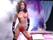 Sinfully Sexy Traci Lords Receives Explicit Beaver Hammering