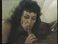 Francois Papillon - Dream Lover (1985)