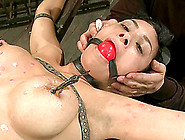Ball Gagged Siren Beretta James Gets Belted Waxed