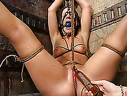 Horny Gen Padova Is Being Inflicted To Some Pain