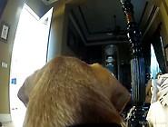Megabusige Milf Beim Spielen Mit Einer Gopro
