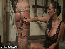 Tied Up Girl Bijou Spanked And Dildoed