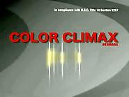 Color Climax - Anal Specialist Vintage Porn Tv