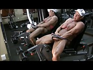 Debra D'andrea 02 - Woman With Muscle