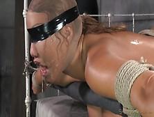 Rough Domination Bdsm Porn For Asian Milf,  Ava Devine