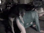 Videos Zoofilia Novinha Dando A Buceta Pro Cachorro