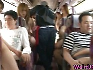 Moronic Asian Babes Are Taking The Bus Tour