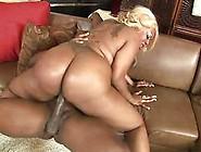 Big Ass Ebony Sucks Dick On Her Knees Before Fucking