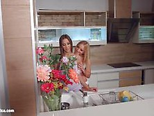 My Kitchen Love By Sapphic Erotica - Kiara Lord And Suzie C Lesb