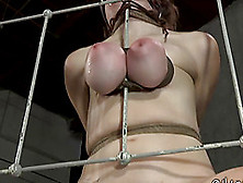 Sexy Bondage Slave Big Tits Tied With Ropes In Bdsm Porn