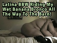 Latina Bbw Riding My Wet Banana Bronco All The Way To The