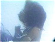 Aquafan: Phoenix Drowns - Sultans