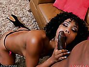Classy Ebony Chick With Juicy Bum Misty Stone Sucks Fat Bbc