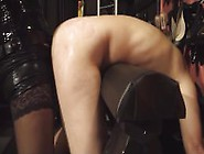 Cbt Strapon Black Mistress Anal Games Toys - More @ Www. Free-Ext