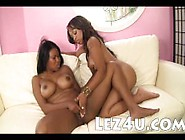 Two Stunning Big Boobs Ebony Lesbians Pussy Eating