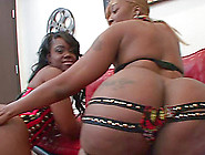 Chubby Girls Enjoy Giving Their Dude A Superb Blowjob In A Ffm S